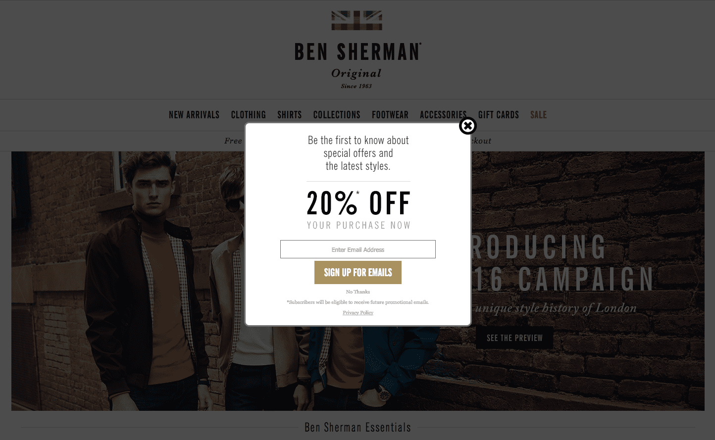 Designer Email Collection Popup