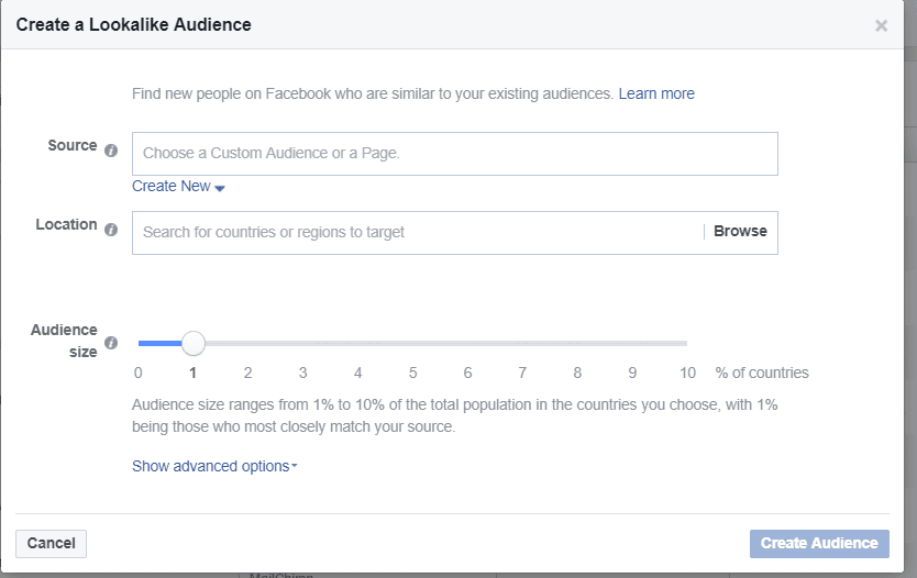 facebook marketing advertising lookalike audience