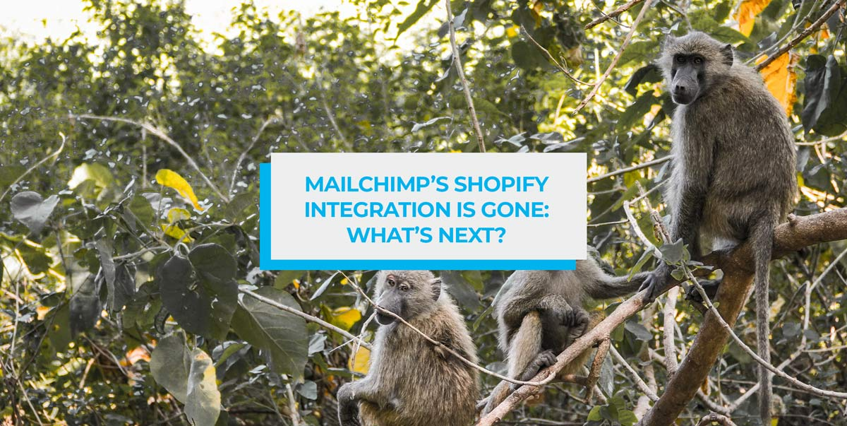 Mailchimp's Shopify Integration is Gone: What's Next