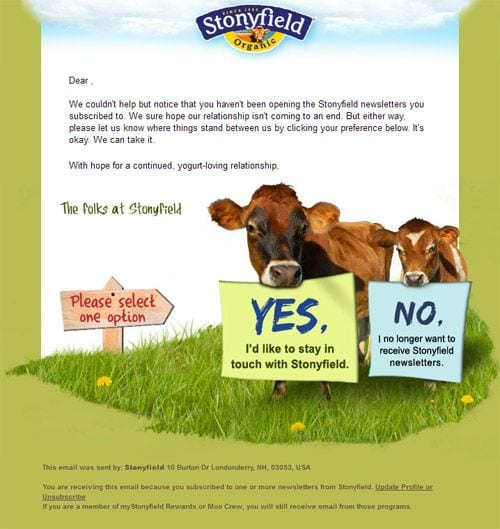 stonyfield reactivation winback email example