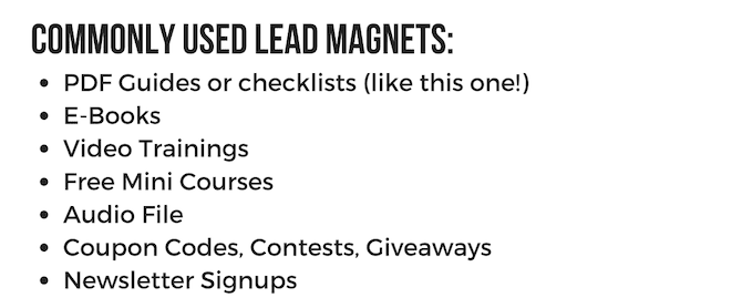 examples of lead magnets