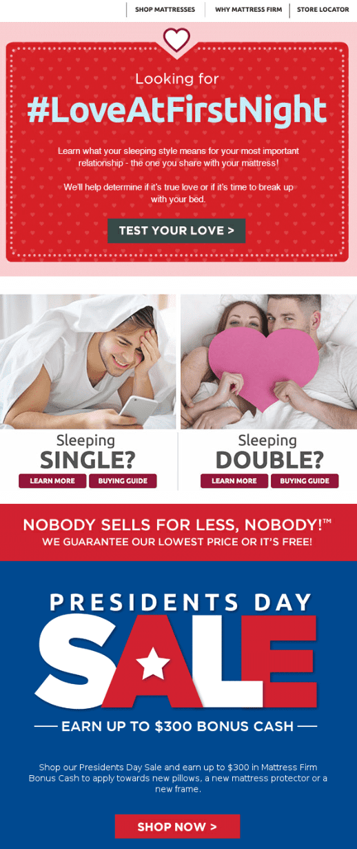 example of presidents day campaign