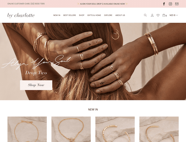by charlotte successful shopify store selling jewelry
