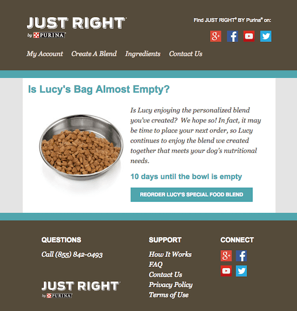 pet food replenishment email example from purina