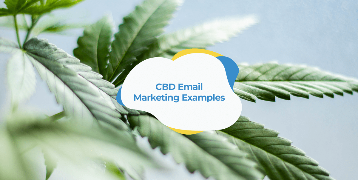 cbd email examples